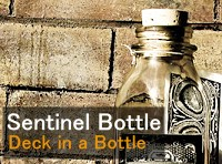Sentinel Bottle / Theory11