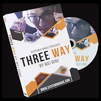 Three Way by Wei Ding & System 6