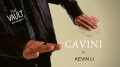 The Vault - CAVINI by Kevin Li