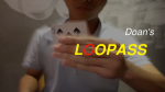 Loopass by Doan