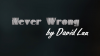 Never Wrong by David Luu
